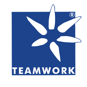 Saloneinrichtung Teamwork Salondesign International GbR Logo